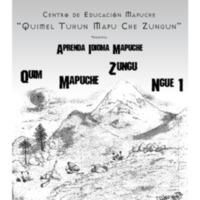 QuimMapuCheZunguNge, Aprenda Idioma Mapuche.pdf
